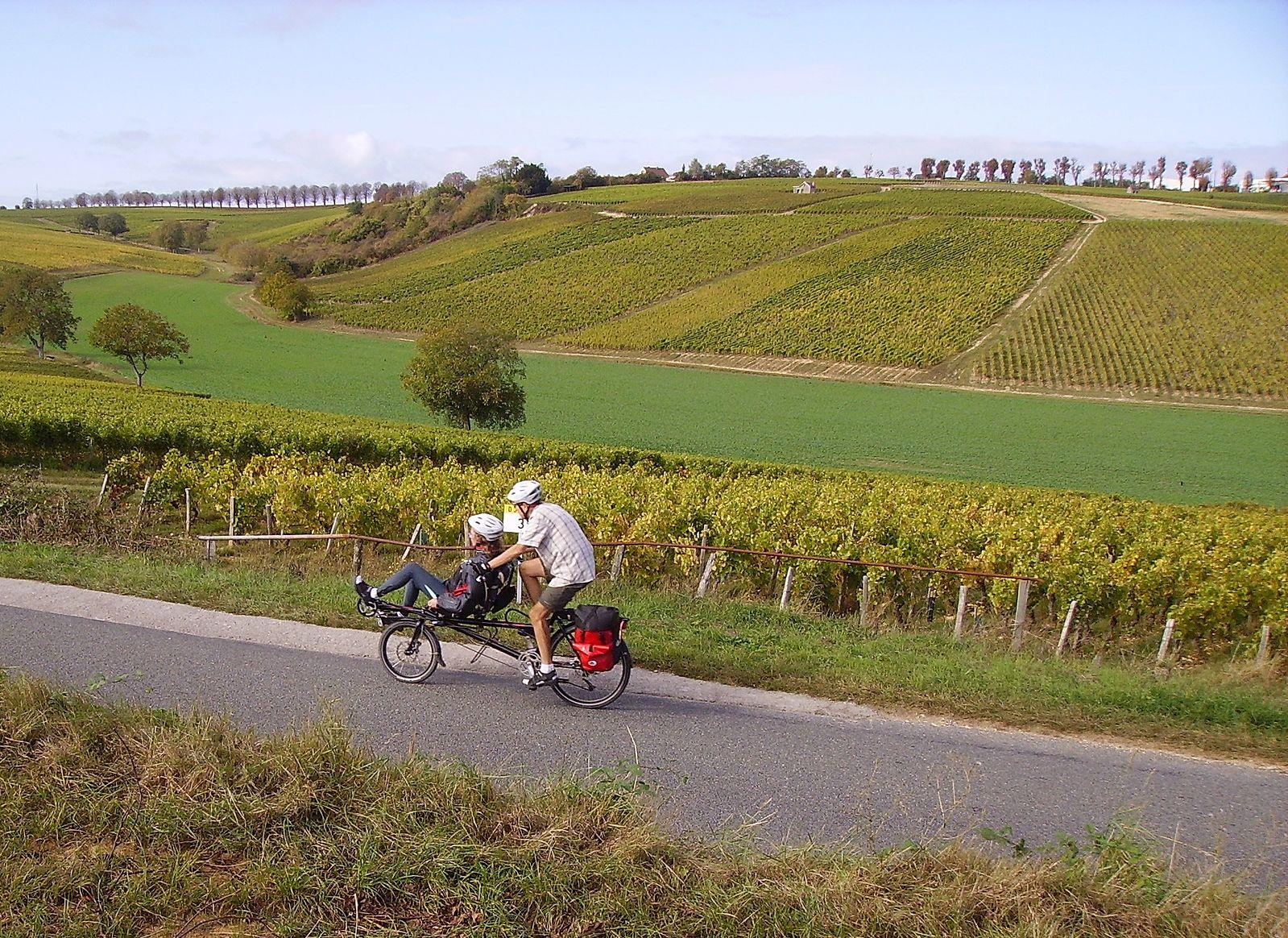 Les bienfaits du vélo-loisirs
