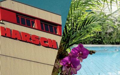 Certificate Harsch / Cressy 50 km